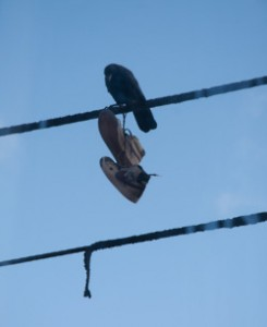 Crow Shoefiti